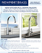 Kitchen Pull-Down Faucets